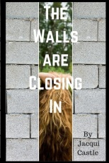 the_walls_are_closingcoversmallfinal